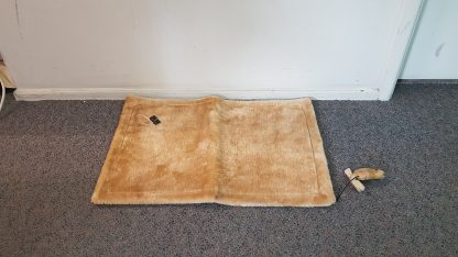 Double Sided Brushed Velour & Sisal Mat with Toy Mouse for Play