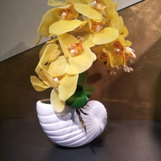 Artificial Moth Orchid Arrangement with Shell Vase Various Colours