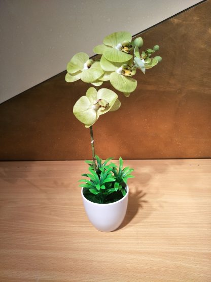 Artificial Small Moth Orchid Various Colours