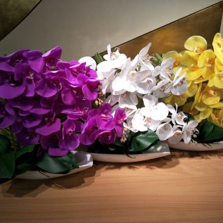 Artificial Moth Orchid With Boat Vase Various Colours