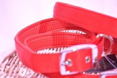 Red Padded Collar Harness & Lead Set