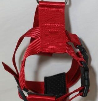(M) Classic Adjustment Pet Harness