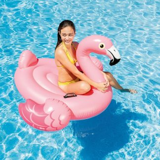 One Person Inflatable Flamingo